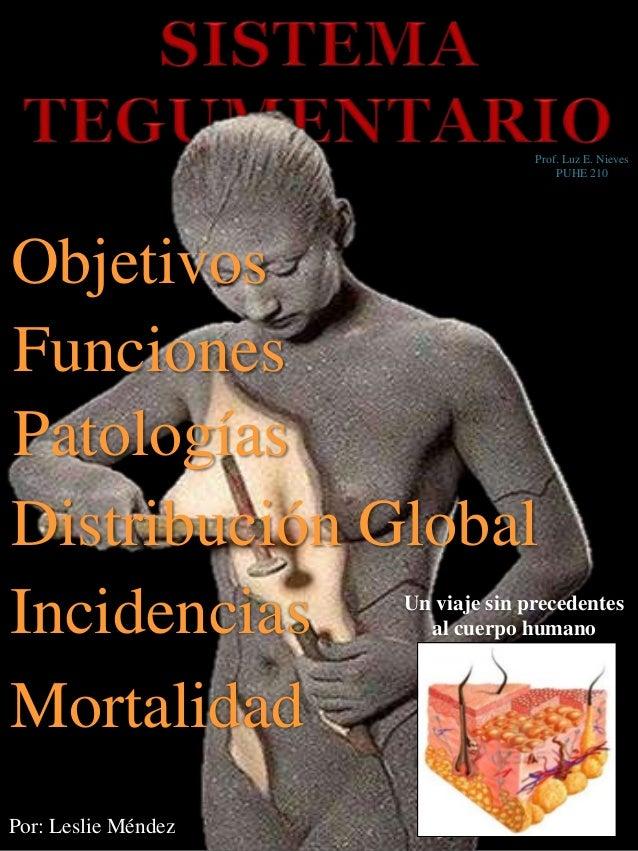 Un viaje sin precedentes al cuerpo humano Por: Leslie Méndez Objetivos Funciones Patologías Distribución Global Incidencia...