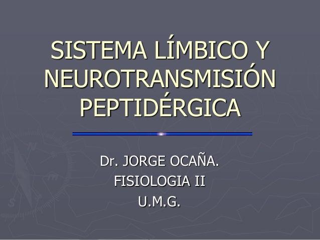 SISTEMA LÍMBICO Y NEUROTRANSMISIÓN PEPTIDÉRGICA Dr. JORGE OCAÑA. FISIOLOGIA II U.M.G.