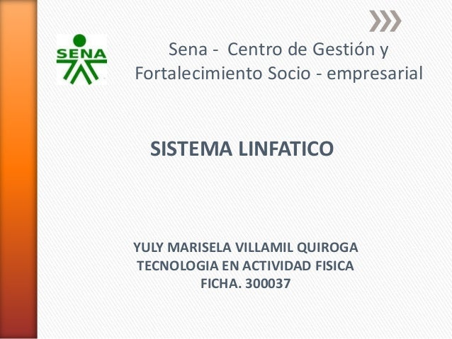 Sena - Centro de Gestión yFortalecimiento Socio - empresarial  SISTEMA LINFATICOYULY MARISELA VILLAMIL QUIROGATECNOLOGIA E...