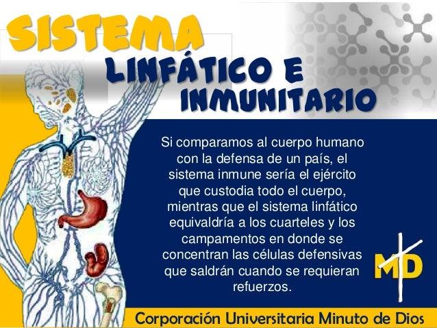 Sistema   Linfático e          Inmunitario       Si comparamos al cuerpo humano          con la defensa de un país, el    ...