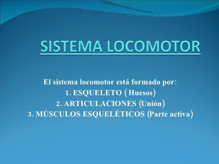 El sistema locomotor está formado por: 1. ESQUELETO ( Huesos) 2. ARTICULACIONES (Unión) 3. MÚSCULOS ESQUELÉTICOS (Parte ac...