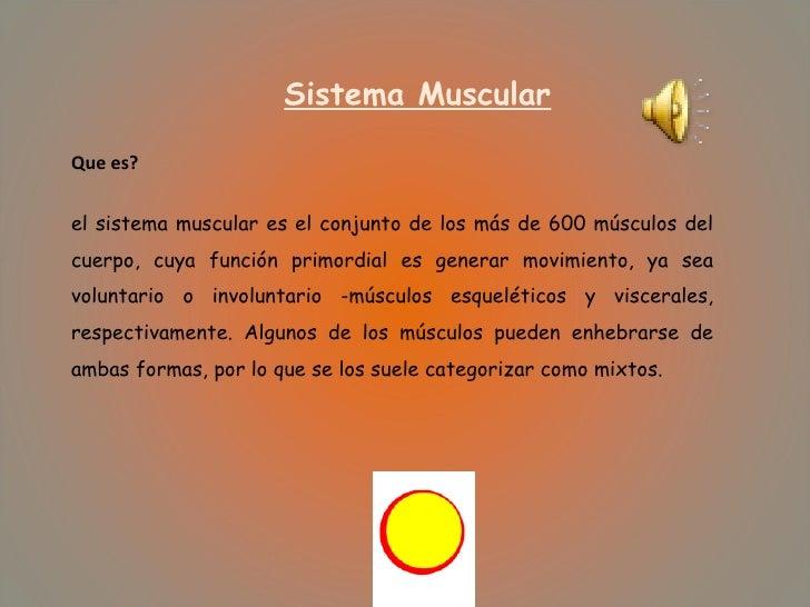 Sistema Muscular Que es? el sistema muscular es el conjunto de los más de 600 músculos del cuerpo, cuya función primordial...