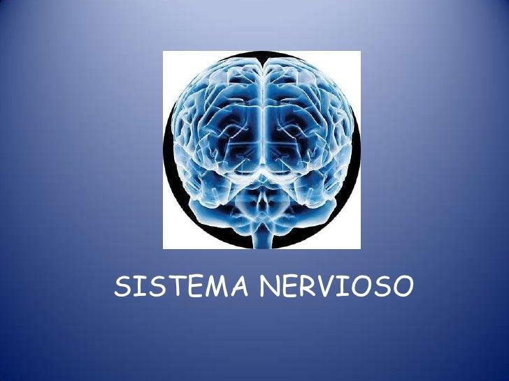 SISTEMA NERVIOSO<br />