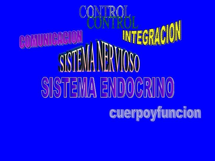 SISTEMA NERVIOSO SISTEMA ENDOCRINO COMUNICACION CONTROL INTEGRACION cuerpoyfuncion