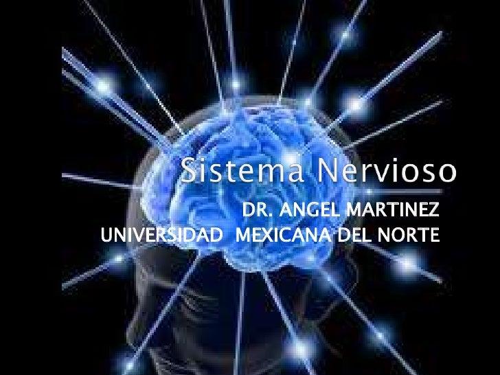 Sistema Nervioso<br />DR. ANGEL MARTINEZ<br />UNIVERSIDAD MEXICANA DEL NORTE<br />