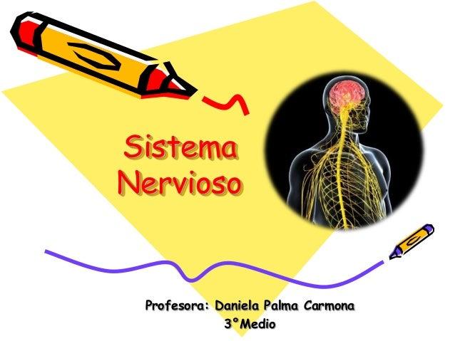 Sistema Nervioso Profesora: Daniela Palma Carmona 3°Medio