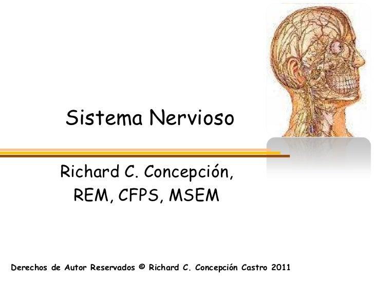 Sistema Nervioso           Richard C. Concepción,             REM, CFPS, MSEMDerechos de Autor Reservados © Richard C. Con...