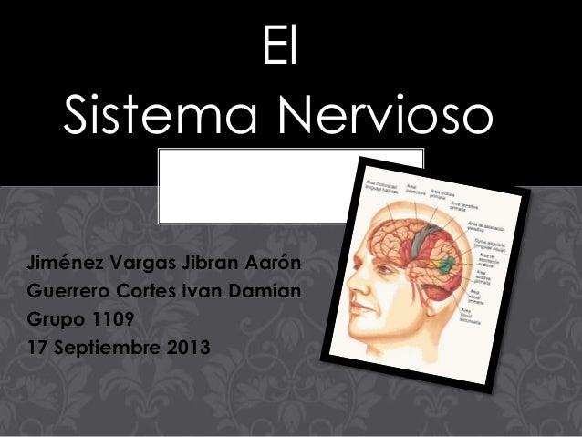 El Sistema Nervioso Jiménez Vargas Jibran Aarón Guerrero Cortes Ivan Damian Grupo 1109 17 Septiembre 2013