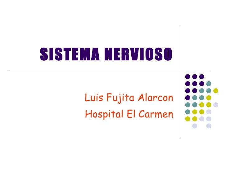 Sistema Nervioso Papa