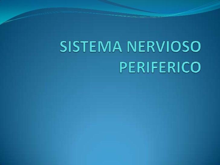 SISTEMA NERVIOSO PERIFERICO<br />
