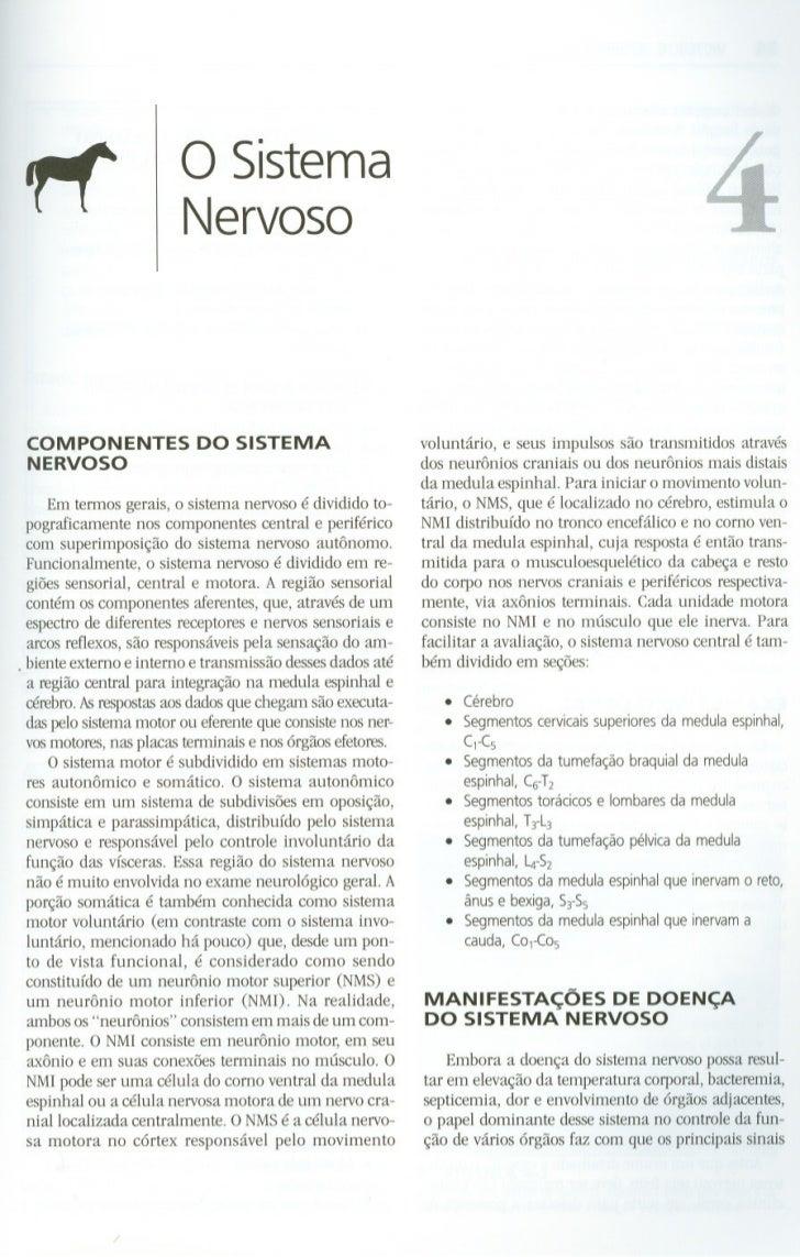"1""f                    o Sistema                           Nervoso    COMPONENTES              DO SISTEMA                 ..."
