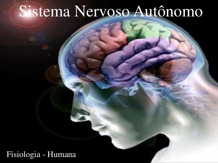 Sistema Nervoso AutônomoFisiologia - Humana