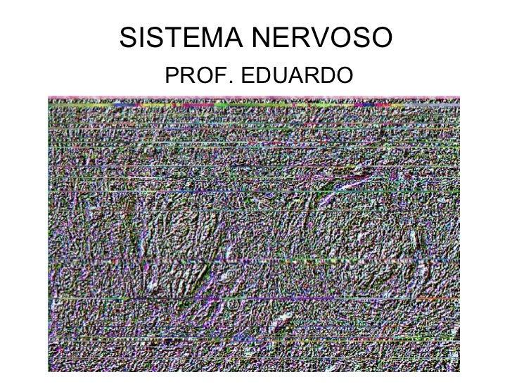 SISTEMA NERVOSO PROF. EDUARDO