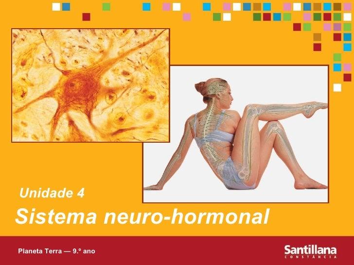 Sistema Neuro Hormonal - PT2