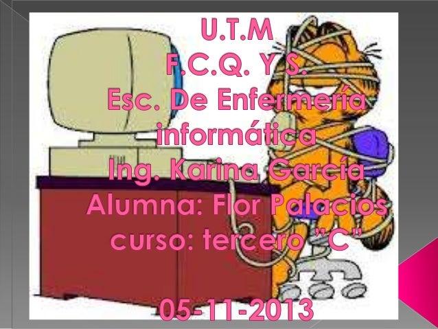 Sistema operativo de windows y linux flor