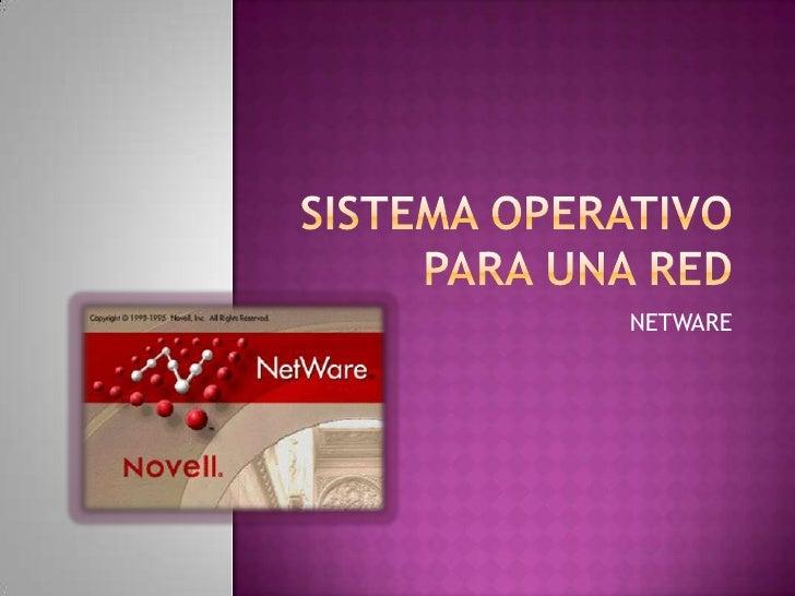 Sistema operativo para una red