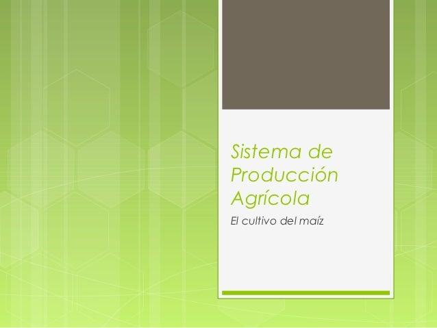 Sistema deProducciónAgrícolaEl cultivo del maíz