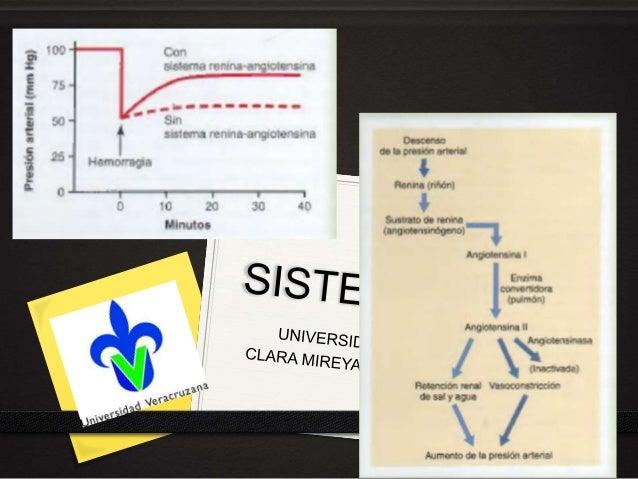 MISION VISION ¨La facultad de medicina de la Universidad Veracruzana es una institución comprometida a formar profesionist...