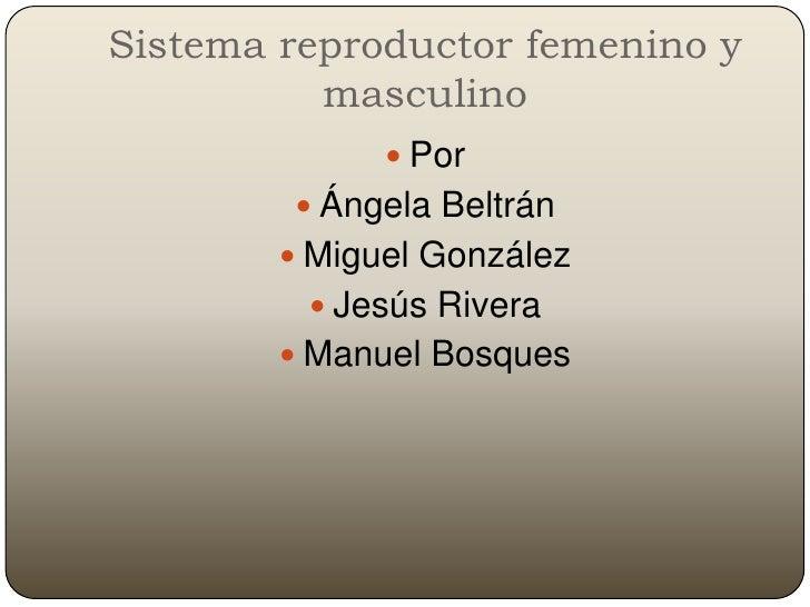 Sistema Reproductor Del Hombre Y La Mujer