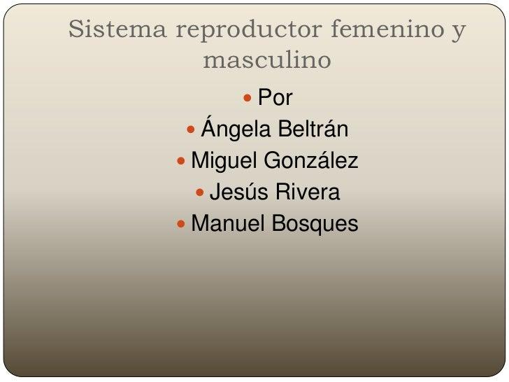 Sistema reproductor femenino y           masculino                Por          Ángela Beltrán          Miguel González ...