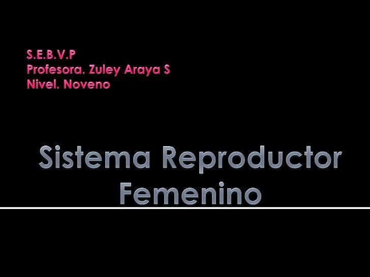 Produce los gametos femeninos (óvulos).Alberga, protege y crea las condicionespara que el embrión, crezca, se desarrolle...