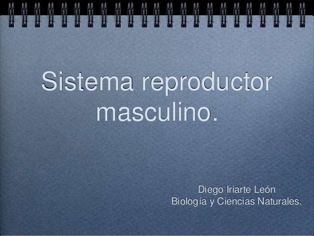 Sistema reproductor masculino. Diego Iriarte León Biología y Ciencias Naturales.