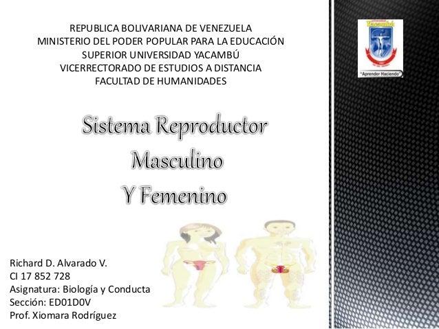 REPUBLICA BOLIVARIANA DE VENEZUELA MINISTERIO DEL PODER POPULAR PARA LA EDUCACIÓN SUPERIOR UNIVERSIDAD YACAMBÚ VICERRECTOR...
