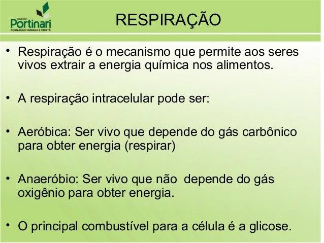 • Respiração é o mecanismo que permite aos seres vivos extrair a energia química nos alimentos. • A respiração intracelula...
