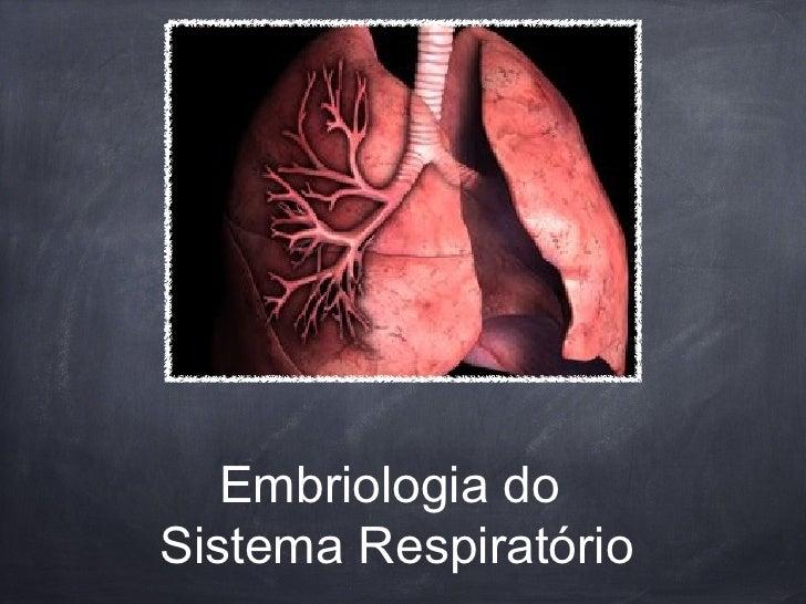 Embriologia doSistema Respiratório