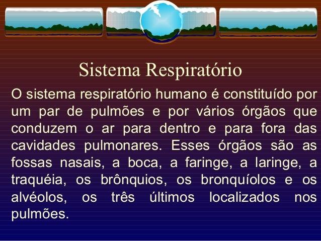Sistema Respiratório O sistema respiratório humano é constituído por um par de pulmões e por vários órgãos que conduzem o ...