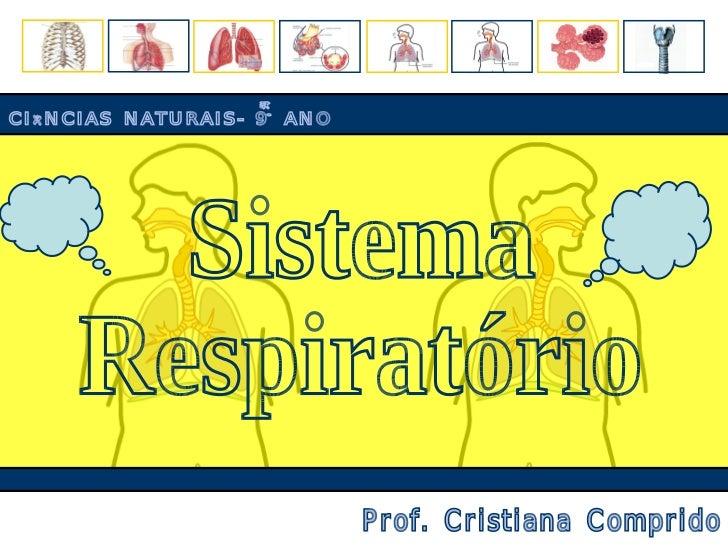 Sistema Respiratório Exercicios