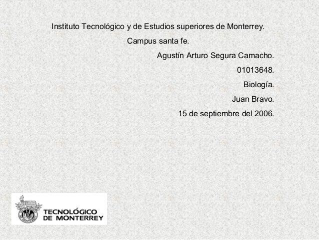 Instituto Tecnológico y de Estudios superiores de Monterrey. Campus santa fe. Agustín Arturo Segura Camacho. 01013648. Bio...
