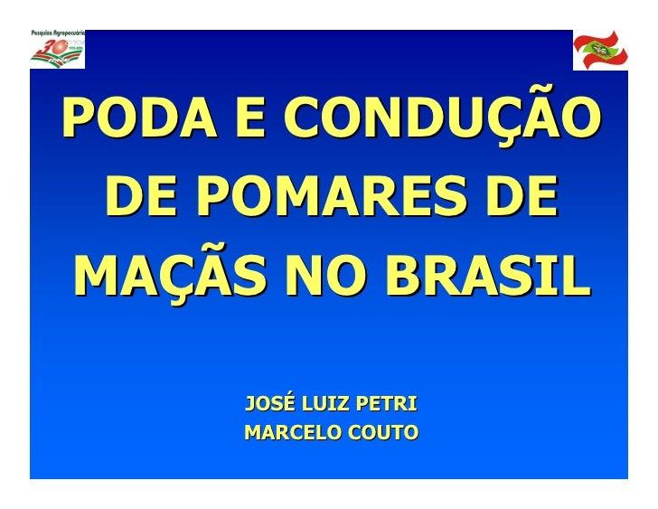 PODA E CONDUÇÃO DE POMARES DEMAÇÃS NO BRASIL     JOSÉ LUIZ PETRI     MARCELO COUTO