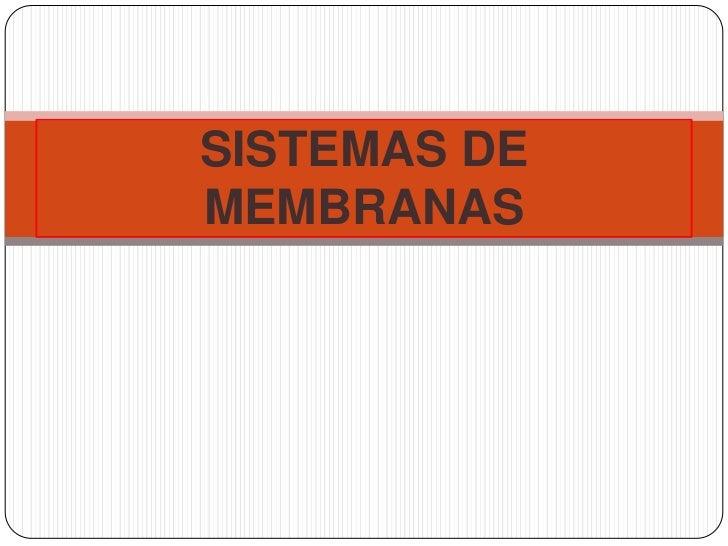 SISTEMAS DE MEMBRANAS<br />