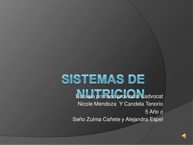 Escuela primaria provincial Ladvocat Nicole Mendoza Y Candela Tenorio 5 Año c Seño Zulma Cañete y Alejandra Espel
