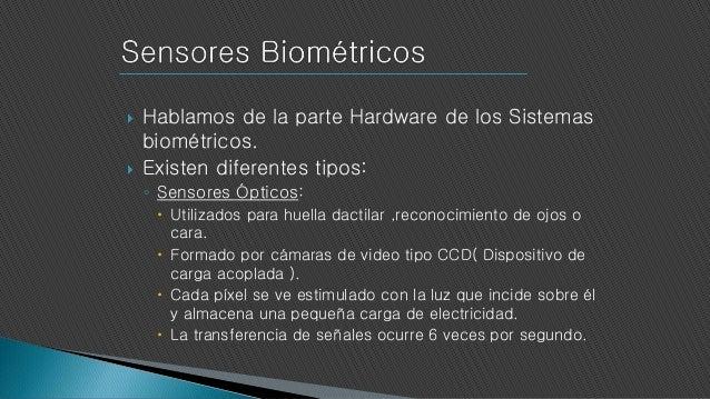 Sistemas Biometricos de Identificacion Los Sistemas Biom Tricos