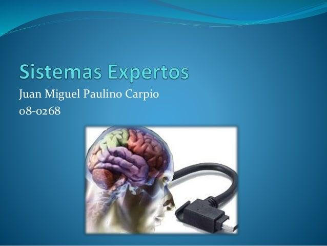 Juan Miguel Paulino Carpio 08-0268