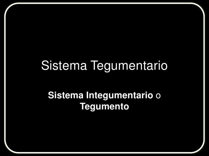 Sistema Tegumentario<br />Sistema Integumentarioo Tegumento<br />
