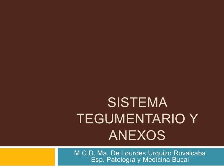 SISTEMATEGUMENTARIO Y   ANEXOSM.C.D. Ma. De Lourdes Urquizo Ruvalcaba    Esp. Patología y Medicina Bucal