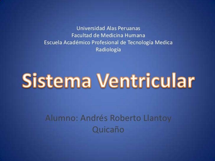 sistema ventricular y sistema limbico