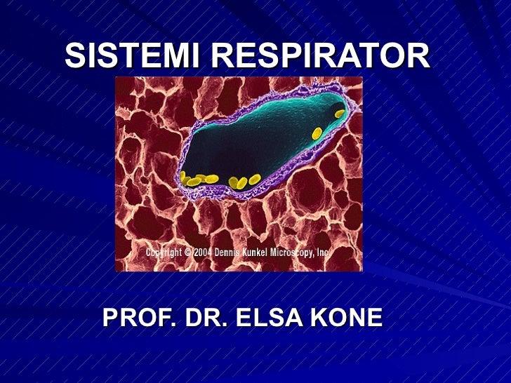 SISTEMI RESPIRATOR PROF. DR. ELSA KONE