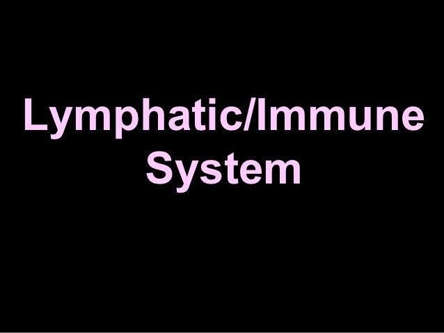 Sistem limfatik farmasi