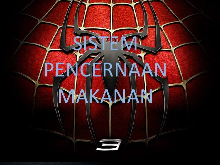 SISTEM PENCERNAAN MAKANAN<br />