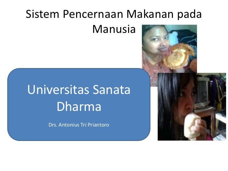 Sistem Pencernaan Makanan pada            ManusiaUniversitas Sanata     Dharma   Drs. Antonius Tri Priantoro