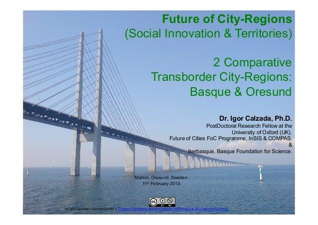 Future of City-Regions                                                    (Social Innovation & Territories)               ...
