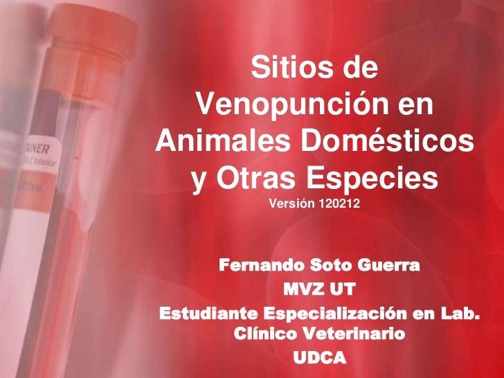 Sitios de  Venopunción enAnimales Domésticos  y Otras Especies           Versión 120212      Fernando Soto Guerra         ...