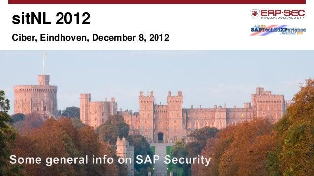Sitnl 2012 erp security