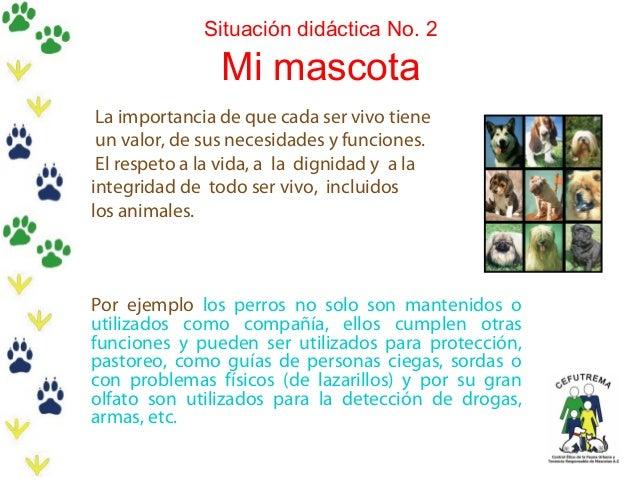 Situación didáctica No. 2  Mi mascota  La importancia de que cada ser vivo tiene un valor, de sus necesidades y funciones....
