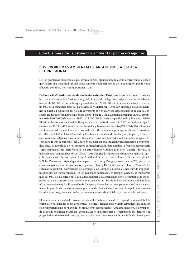 Conclusiones de la situación ambiental por ecorregiones   LOS PROBLEMAS AMBIENTALES ARGENTINOS A ESCALA ECORREGIONAL  De l...