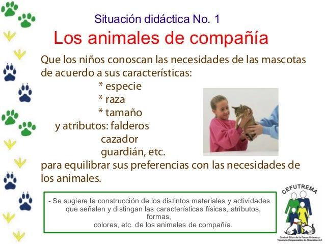 Situación didáctica No. 1  Los animales de compañía Que los niños conoscan las necesidades de las mascotas de acuerdo a su...